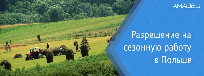 Разрешение на сезонную работу в Польше