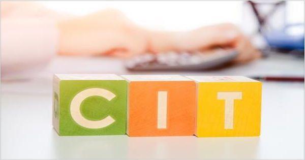 Кто должен подавать годовую декларацию CIT-8