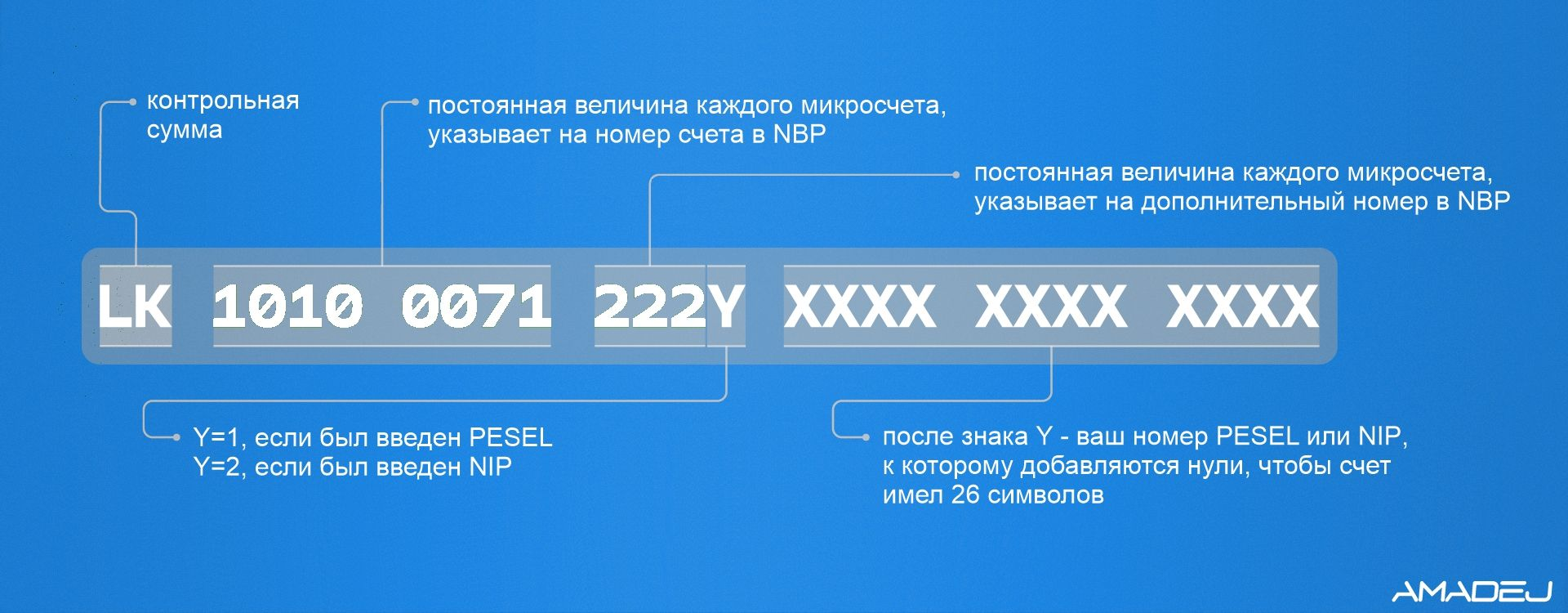 Структура номера налогового счета